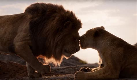 The Lion King 2019 Articles
