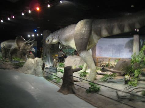 Las Vegas Natural History Museum - 2018 All You Need to