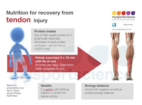 Nutrition for recovery from tendon injuries   Jeukendrup